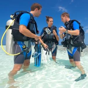 Professional Dive Master