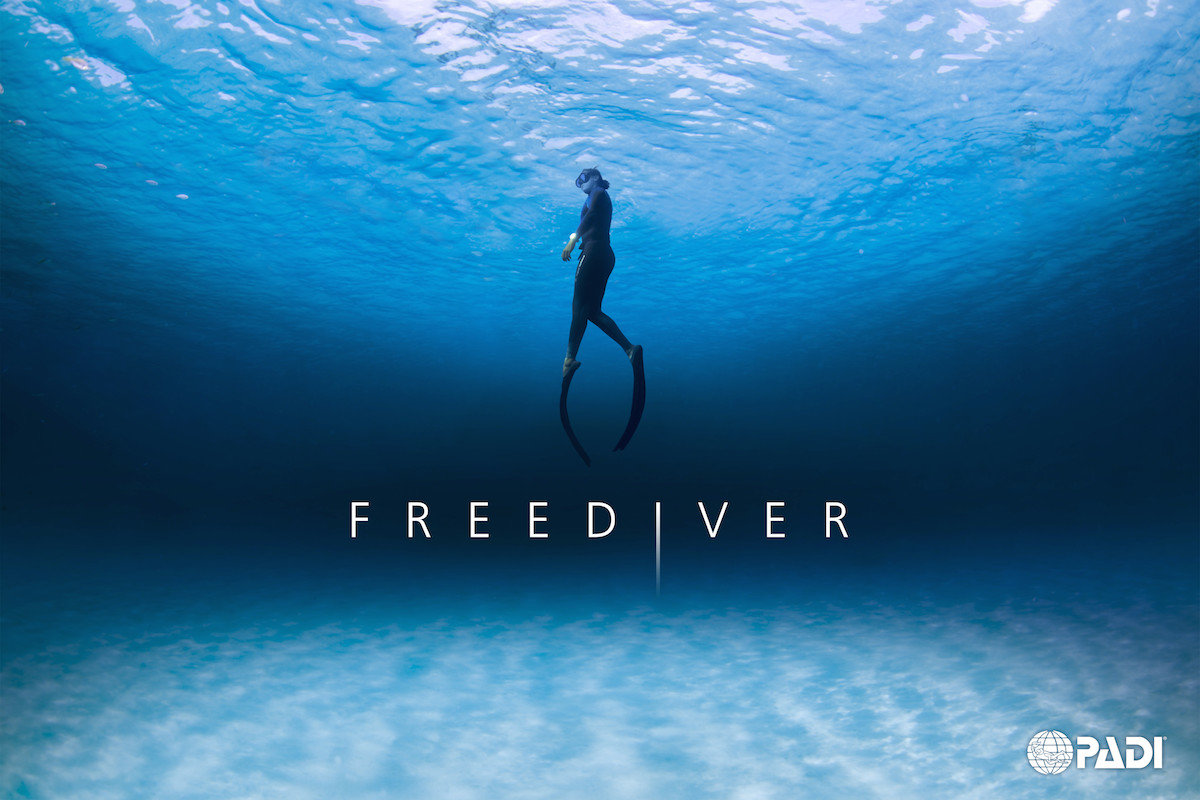 Freediving Gigglin Marlin Dive And Swim Scuba Diving